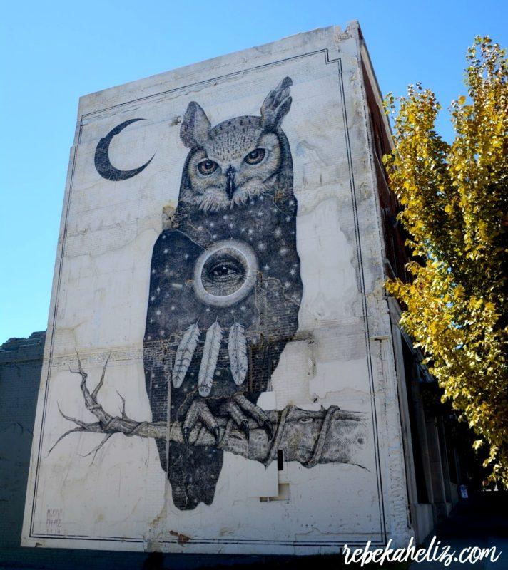 alexis diaz, alexis diaz mural, mural, fayetteville arkansas, owl, arkansas, downtown, fayetteville
