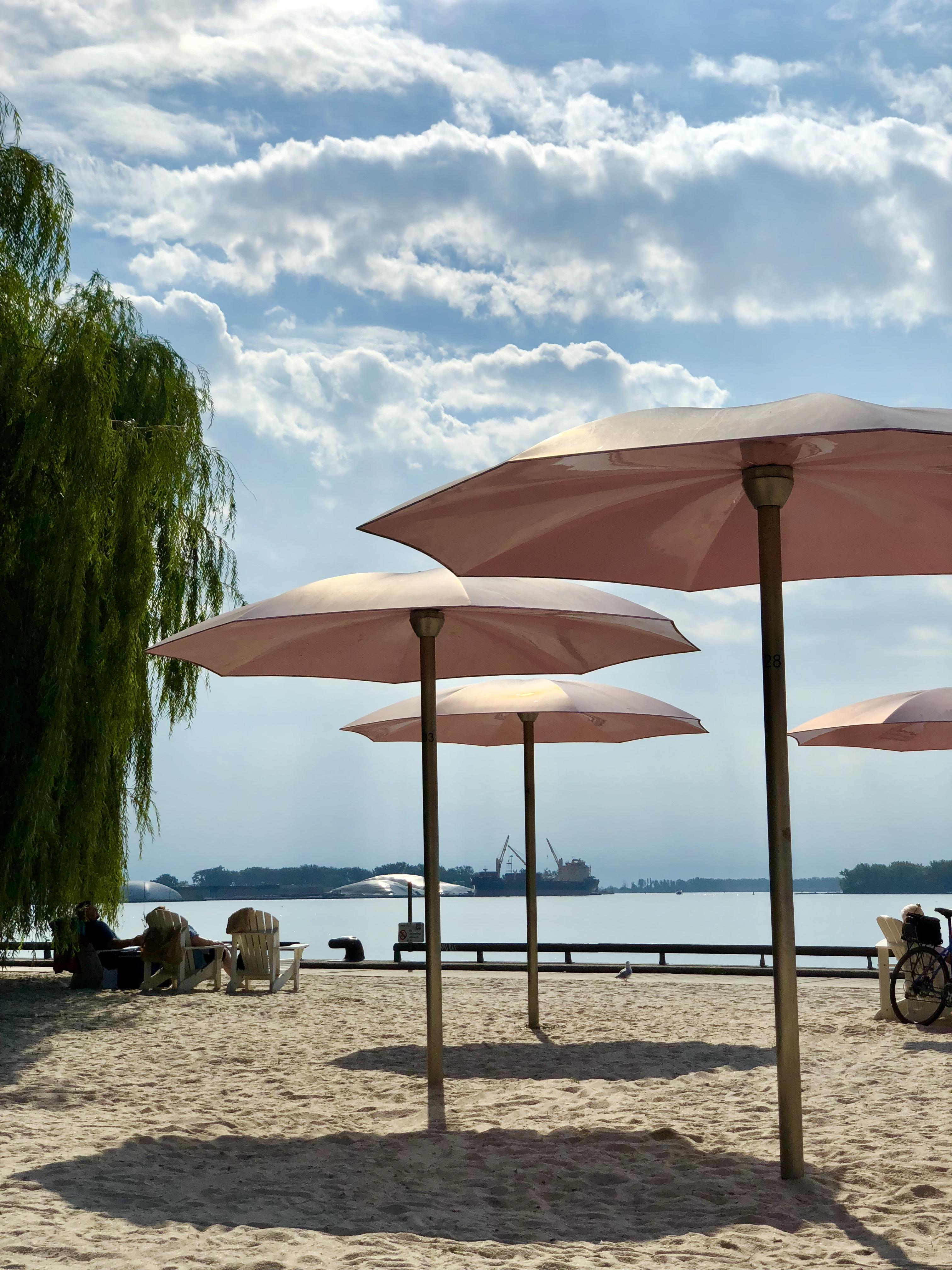 toronto, cn tower, travel tuesday, travel, sugar beach, beach